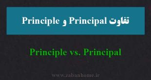 principle و principal
