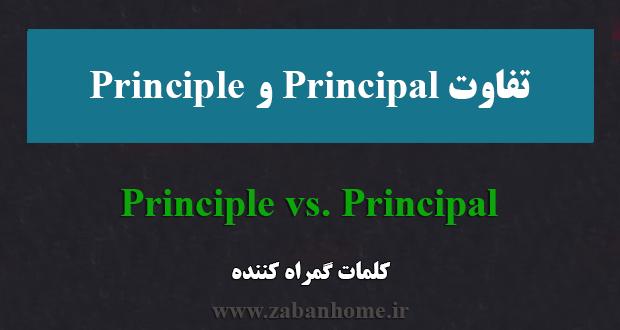 تفاوت principle و principal